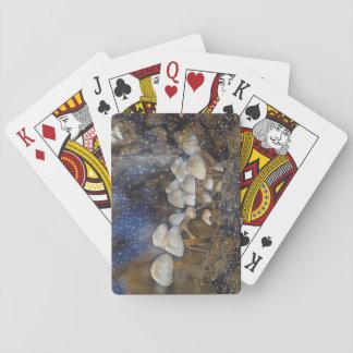Magische Pilze Pokerdeck