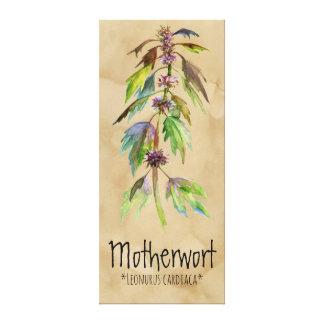 "Magischer PflanzenMotherwort 18,30"" x 41,73"" Leinwanddruck"