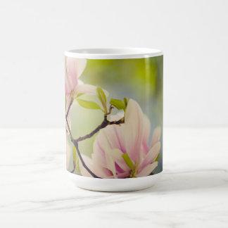Magnolien-Blumen Kaffeetasse