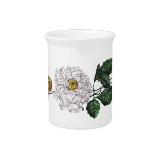 Magnolien-Blüte Getränke Pitcher