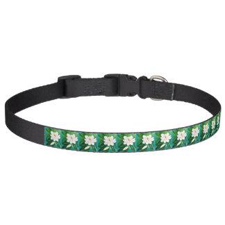 Magnolien-Hundehalsband Haustierhalsband