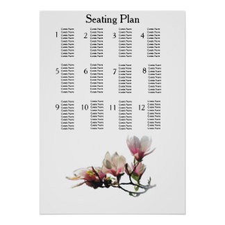 Magnolien-moderne einfache elegante poster