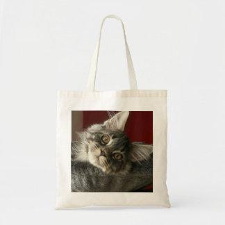 Maine-Waschbär-Kätzchen-Tasche Tragetasche