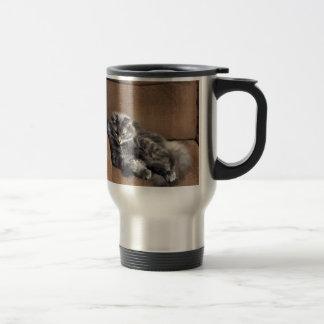 Maine-Waschbär-Katze Reisebecher