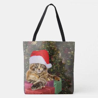 Maine-Waschbär-Katze Sankt u.
