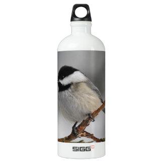 MaineChickadee Aluminiumwasserflaschen