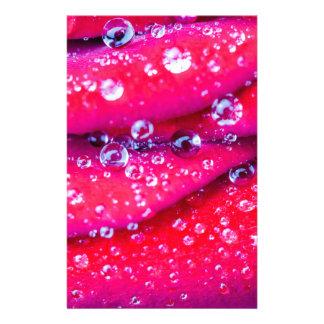 Makro runde Wassertropfen auf Roter Rose Briefpapier