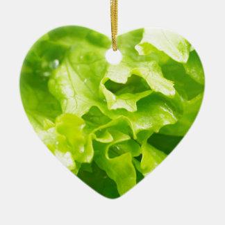 Makroansicht des Blätter des Kopfsalates in einem Keramik Ornament