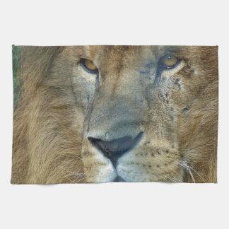 Male Lion (Loewe) Küchenhandtuch