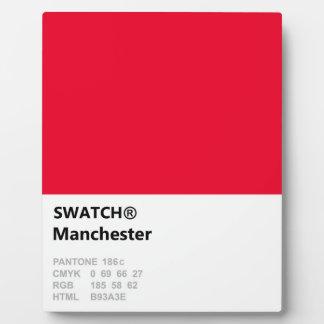 Manchester ist ROT Fotoplatte