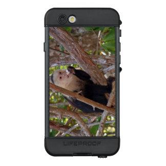Manuel Antonio Costa Rica Affe LifeProof NÜÜD iPhone 6s Hülle