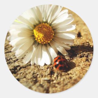 Marienkäfer Blume Runder Aufkleber