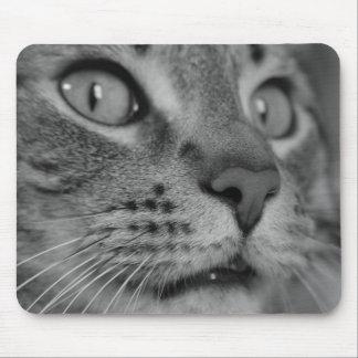 … Mausunterlage der MausMmmmm Mousepads