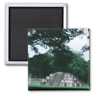 Mayakultur-FarbFoto entwarf Kühlschrank Quadratischer Magnet