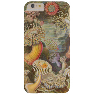 Meer Anenome durch Ernst Haeckel Barely There iPhone 6 Plus Hülle