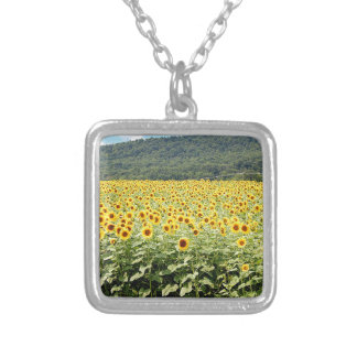 Meer der Sonnenblumen Versilberte Kette