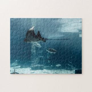 Meeresflora und -fauna puzzle