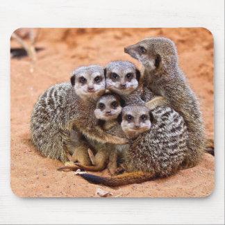 Meerkat Familie Mousepads