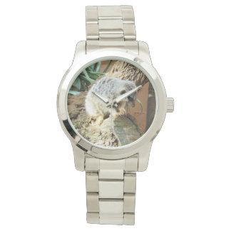Meerkat Katzen-Nickerchen, große silberne Armbanduhr