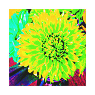 Mehrfarbige Dahlien helles Gelbes, orange, Rosa Gespannter Galerie Druck