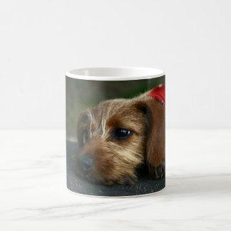 MEIN Hund Tasse