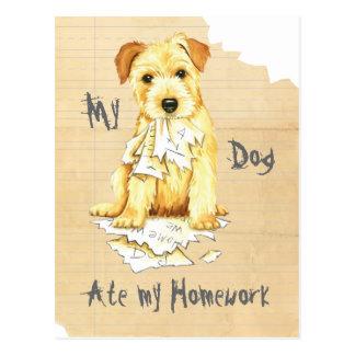Mein Norfolk-Terrier aß meine Hausaufgaben Postkarte