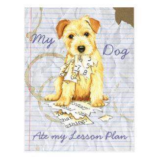 Mein Norfolk Terrier aß meinen Unterrichtsplan Postkarte