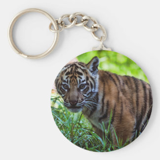 MieteSumatran Tiger CUB Standard Runder Schlüsselanhänger