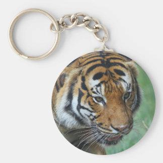 Mietmalaysische Tiger-Nahaufnahme Standard Runder Schlüsselanhänger