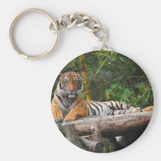 Mietmalaysischer Tiger, der auf Klotz Lounging ist Standard Runder Schlüsselanhänger