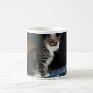 Miezekatze das Kätzchen Tasse