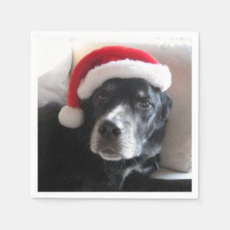 Mischung Sankt Hund-Labrador Rottweiler Servietten