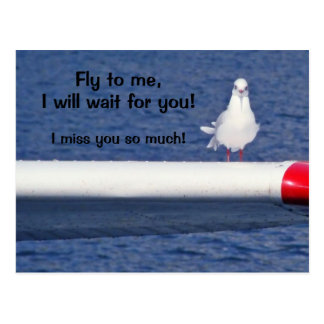 Missing You - Seagull Postcard Postkarte