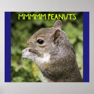 Mmmmm Erdnüsse - lustiges Eichhörnchen Poster