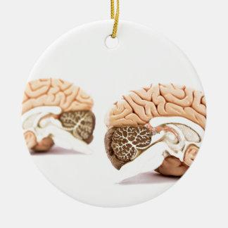 Modell der menschlichen Gehirne abgeschieden auf Keramik Ornament