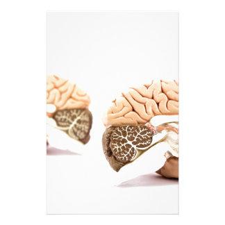 Modell der menschlichen Gehirne abgeschieden auf Personalisiertes Büropapier