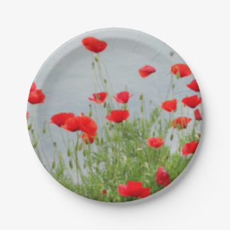 Mohnblumen-Blumen-Foto-kundenspezifischer Pappteller