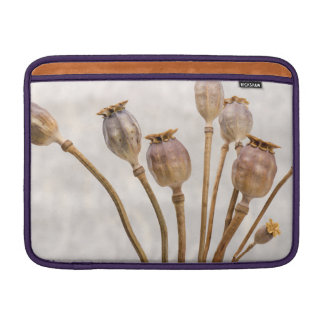 Mohnblumen-Stroh-Hülsen Sleeve Fürs MacBook Air