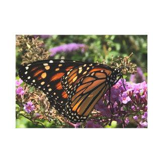 Monarch-Schmetterling dehnte Leinwand-Druck aus Leinwanddruck