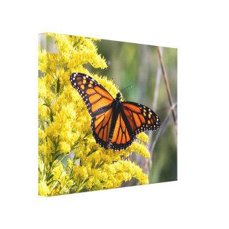 Monarch-Schmetterlings-Leinwand-Druck Leinwanddruck