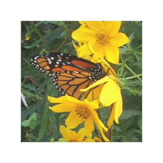 Monarchfalter Leinwanddruck