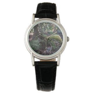 Moos bedeckte gefallenen Baum in einer Armbanduhr