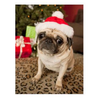 Mops in Weihnachtsmann-Hut, der auf Teppich sitzt Postkarte