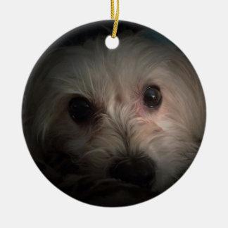 Morkie Hundewelpen-niedliche Rettungs-Verzierung Keramik Ornament