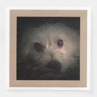 Morkie Hundewelpen-niedliche Serviette