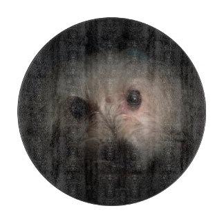 Morkie Hundewelpen-niedliches Schneidebrett
