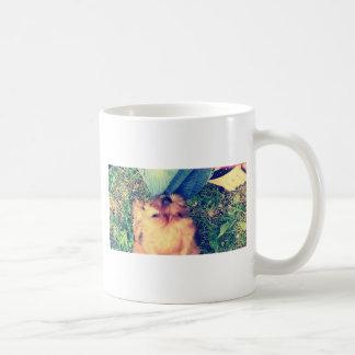 Morkie Welpenspielen Tasse