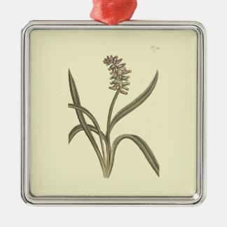 Moschus-Trauben-Hyazinthen-botanische Illustration Quadratisches Silberfarbenes Ornament