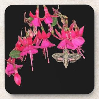 Motten-Schmetterling Sphynx Fuschia Blumen mit Untersetzer