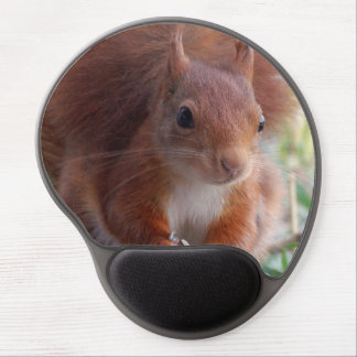 Mousepad Squirrel - Foto Jean-Louis Glineur